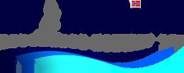 dpm-logo2